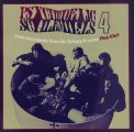 VARIOUS - PSYCHEDELIC SCHLEMIELS VOL. 4 - CD Wooden Hill Psychedelic
