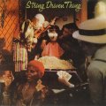 STRING DRIVEN THING - String Driven Thing - CD 1972 SPM Progressiv Folkrock