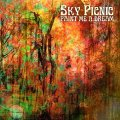 SKY PICNIC - Paint Me A Dream - LP (black) Nasoni Psychedelic