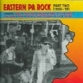 VARIOUS - Eastern PA Rock Part Two - CD 1966 - 69 Arf Arf Psychedelic