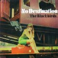 BLACKBIRDS - No Destination - CD 1968 Krautrock + Bonus Longhair Psychedelic