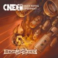 CHUCK NORRIS EXPERIMENT - Right Between The Eyes - CD Transubstans Progressiv