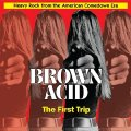 VARIOUS - Brown Acid : The First Trip - CD RIDING EASY Psychedelic