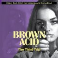 VARIOUS - Brown Acid : The Third Trip - CD RIDING EASY Psychedelic