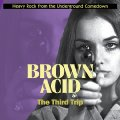 VARIOUS - Brown Acid : The Third Trip - LP (colour) RIDING EASY Psychedelic