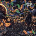 DEEP SPACE DESTRUCTORS - Psychedelogy - LP black Space Rock Prod Psychedelic