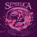 SENDELICA - Streamedelica  She Sighed As She Hit - CD R.A.I.G. Progressiv