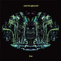COSMIC GROUND - Live - 2 LP (black/green) 2017 Adansonia Records Krautrock Elektronik