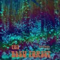 THE BLEU FOREST - Ichiban  Live At Jimmiess - LP colour 1967 Golden Pavilion Psychedelic