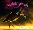 VIOLETTE SOUNDS - Wild And Blue - (pink) LP Haensel & Gretel Progressiv