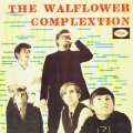 WALFLOWER COMPLEXTION - Walflower Complextion -2 CD 1967 Shadoks Psychedelic Garage