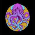 ELECTRIC OCTOPUS - This Is Our Culture - 2 LP Adansonia Records Psychedelic