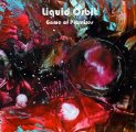 LIQUID ORBIT - Game Of Promises - CD Nasoni Psychedelic