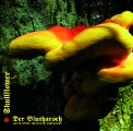 DER BLUTHARSCH & TICOTLH / SKULLFLOWER - Angel Of Darkness - CD Dead Seed Psychedelic Progressiv