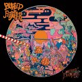BURIED FEATHER - Cloudberry Dreamshake - LP orange Kozmik Artifactz Psychedelic