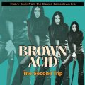 VARIOUS - Brown Acid  The Second Trip - LP colour RIDING EASY Psychedelic