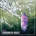 IF ANYTHING HAPPENS TO THE CAT - Kingdom Of Roots - CD Self release Psychedelic