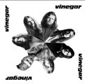 VINEGAR - Vinegar - CD 1971 Krautrock Garden Of Delights Progressiv