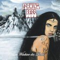 FLAMING BESS - Wächter des Lichts - CD 2008 Arkana Multimedia Krautrock Progressiv