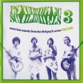VARIOUS - PSYCHEDELIC SCHLEMIELS, VOL. 3 - CD Wooden Hill Psychedelic