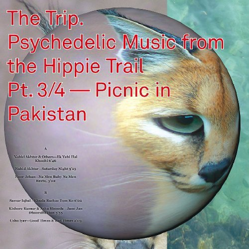 VARIOUS - The Trip 3 Psychedelic Music From The Hippie Trail - 10 inch Global Po Funk