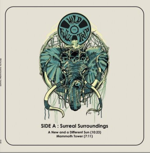 WILD FUZZ TRIP - Surreal Sourroundingsfuzznaut - LP black Clostridium Psychedelic Stonerrock
