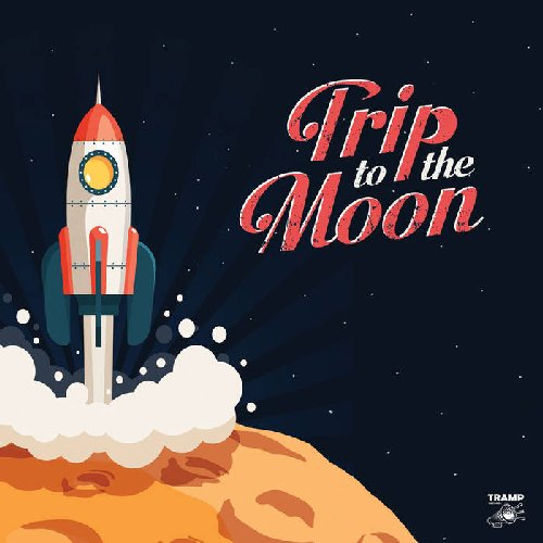 VARIOUS - Trip To The Moon  11 Obscure & Groovy Rare Groove Songs About - LP Tr Soul Garage