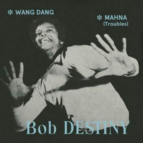 DESTINY BOB - Wang Dang  Mahna troubles - 7 inch PHARAWAY SOUNDS Soul Funk